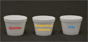 Adaptação térmica