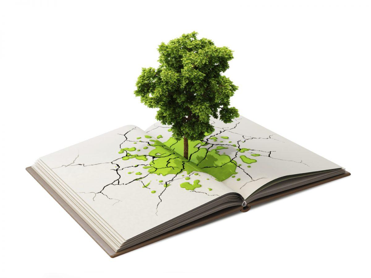 Curso de Educação Ambiental para Promoção de Saúde Coletiva