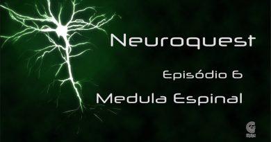 Neuroquest – Vídeocast – Episódio 06 – Medula Espinal