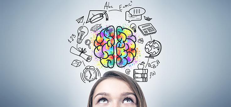 [Entrevista] 'Como a neurociência ajuda a explicar os processos de aprendizagem na educação'