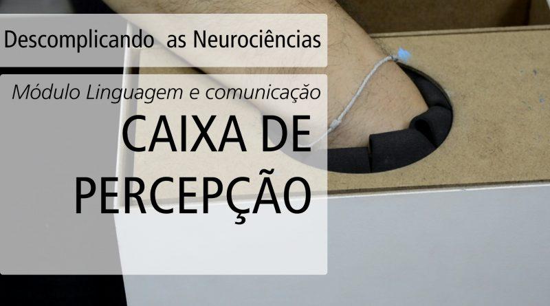 [Vídeo] Caixa da Percepção | Descomplicando as Neurociências