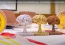 Resultado da etapa Local Descentralizada 2020: campeões das células descentralizadas e independentes