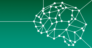 XIV Curso de Formação Continuada em Neuroeducação (online) – de 14 a 18/12/2020