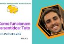 Como Funcionam os Sentidos: Tato   Olimpíada Brasileira de Neurociências
