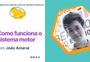 Como funciona o sistema motor | Olimpíada Brasileira de Neurociências