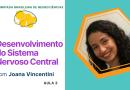 Desenvolvimento do Sistema Nervoso Central   Olimpíada Brasileira de Neurociências