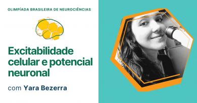 Excitabilidade Celular e Potencial Neuronal   Olimpíada Brasileira de Neurociências